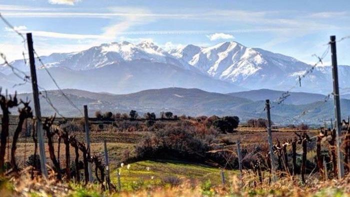 Domaine Lafage und die Region Languedoc