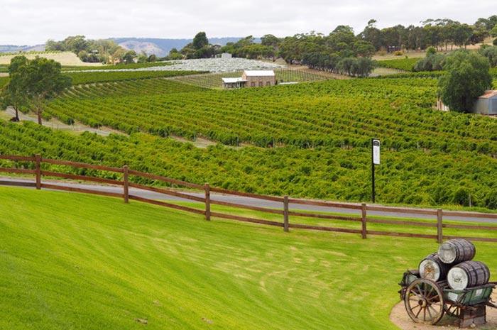 Weinregionen Australiens