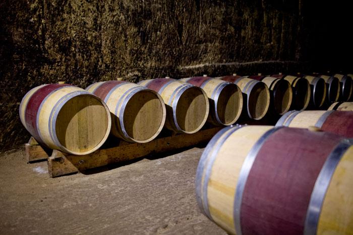 Weinregion Bordeaux