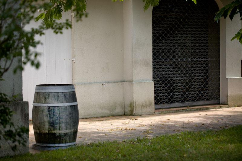 Weinbaugebiete in der Region Castilla y León
