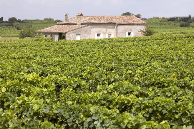 Weinbaugebiete in der Region Norditalien