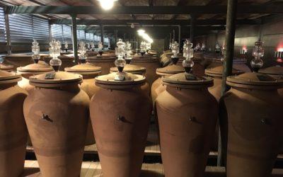 Bordeaux 2018 – Margaux unsere Verkostungsnotizen