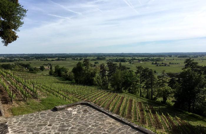 Weinbaugebiete in der Region Rheinland-Pfalz