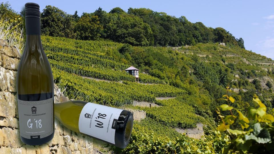 Weingut Disibodenberg an der Nahe