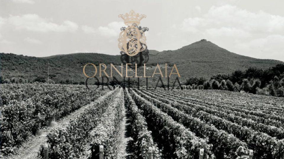 Tenuta dell Ornellaia – welcome back – besser denn je zuvor