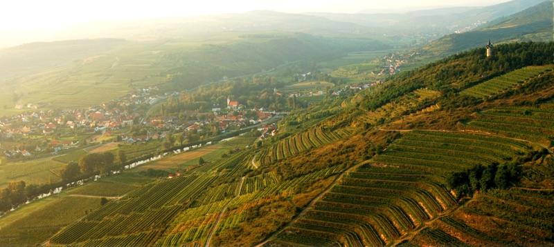 Weingut Loimer Kamptal – Natur voller Geschmack